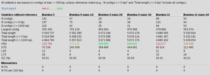 assembly-nano-stats1